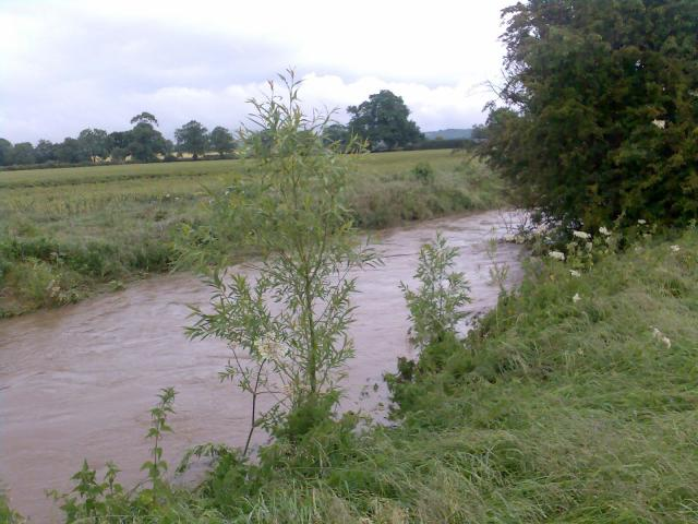 How high and wide the beck can get after torrential rain