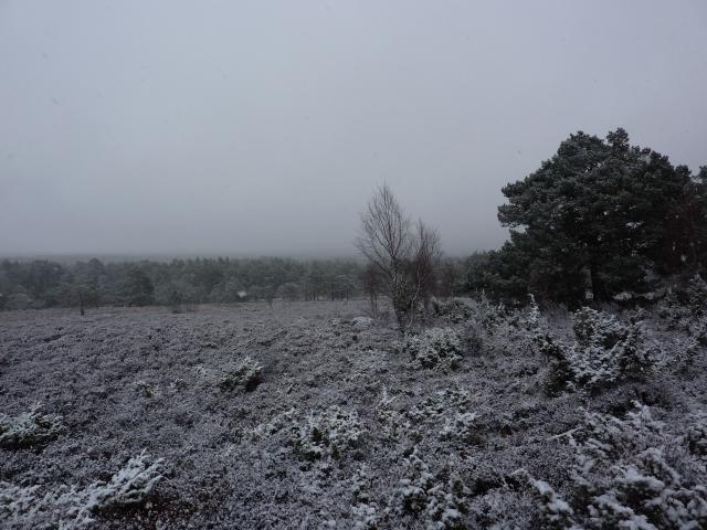 nov12-april13 096